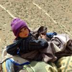 piccolo nomade - spostamento a quota 2610 m
