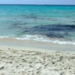sabbia finissima a saleccia